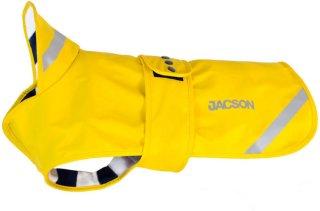 Jacson Pippi 35