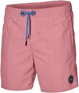 ONeill O'Neill Vert Shorts