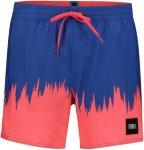 ONeill O'Neill Dip Dye Shorts