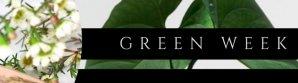 Green spirit kampanje