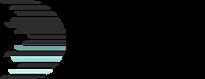 Duet Audio logo