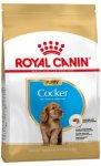 Royal Canin Royal Canin Cocker Spaniel Puppy