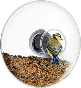 Window Bird Feeder 20cm