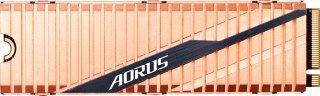 Gigabyte AORUS 1TB (GP-ASM2NE6100TTTD)