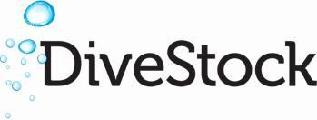 DiveStock logo