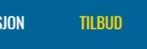 Billigvvs.no kampanje