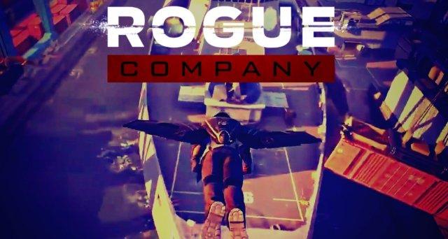Rogue Company til PC