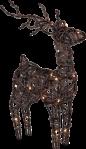 Star Trading Rein LED rotting 55cm
