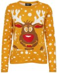 Only Rain Deer Christmas Knitted Pullover
