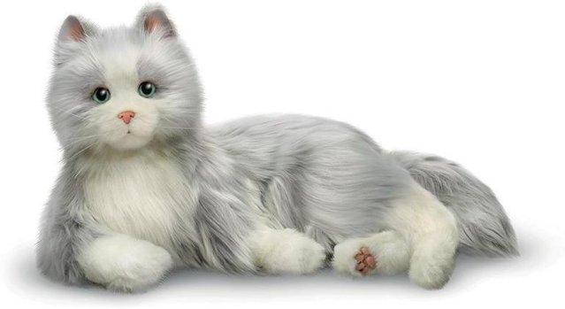 TFH Interaktiv Katt
