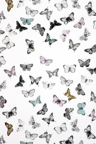 Mimou Butterfly tapet