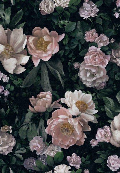 Boråstapeter New Dawn Rose tapet