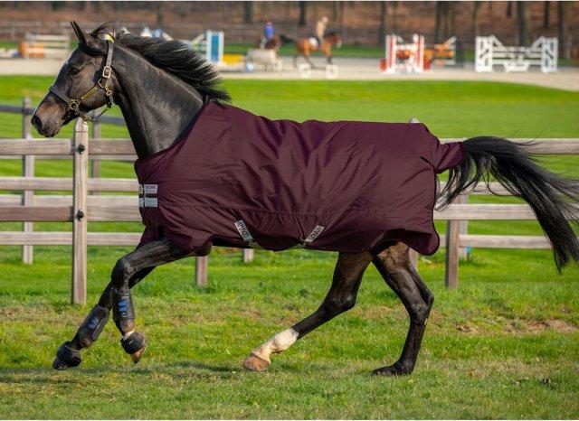 Horseware Amigo Hero Ripstop (50 gr)