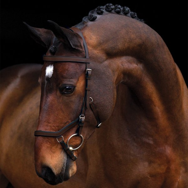 Horseware Rambo Micklem Hodelag