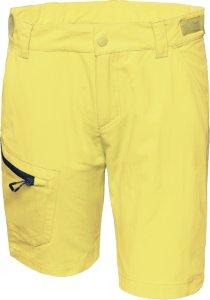 Blekinge Softshell Shorts