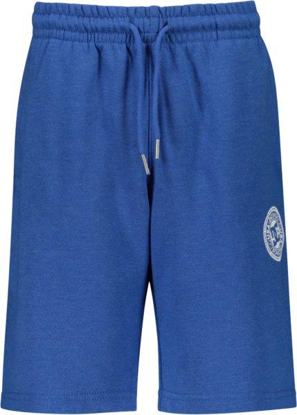 DC Rebel Shorts