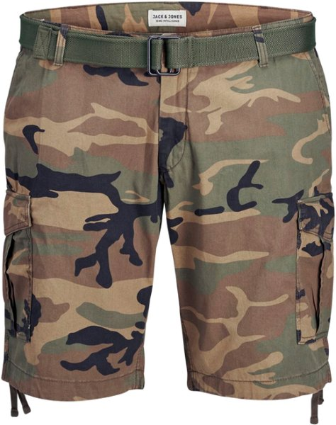 Jack & Jones Charlie Cargo Shorts (Herre)