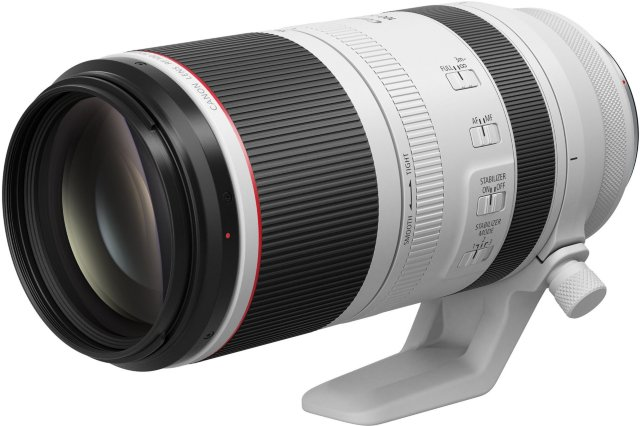 Canon RF 100-500mm f/4.5-7.1 L IS USM