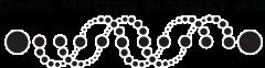 Dark Matter Norway logo