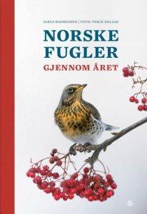 Norske fugler gjennom året