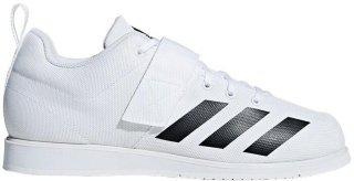 Adidas Powerlift 4 (Herre)