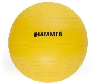 Gymnastic Ball 55 cm