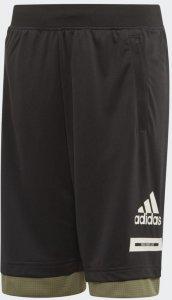 Bold Shorts (Barn)