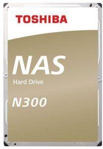 N300 12TB (HDWG21CEZSTA)