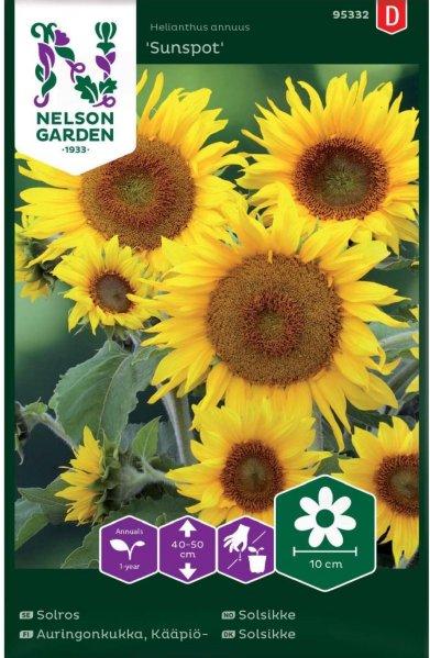Nelson Garden Solsikke Sunspot (95332)