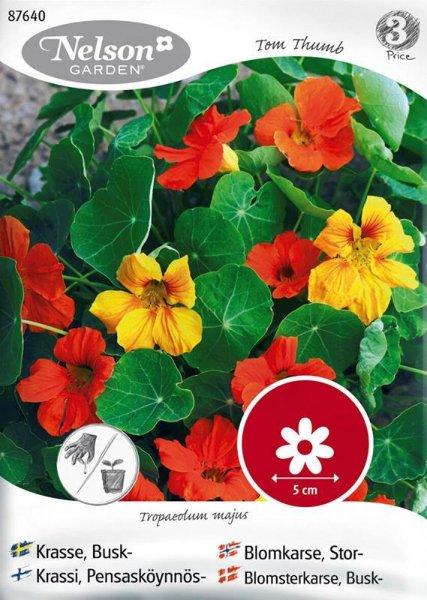 Nelson Garden Blomkarse Tom Thumb (87640)