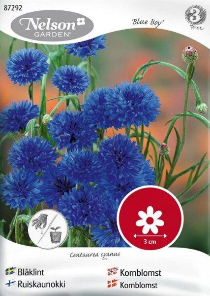 Nelson Garden Kornblomst Blue Boy (87292)