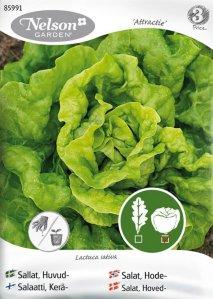 Nelson Garden Salat Attractie (85991)