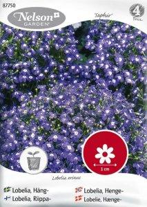 Nelson Garden Lobelia Saphir (87750)