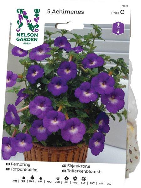 Nelson Garden Skjevkrone (72020)