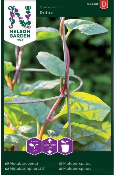 Nelson Garden Malabarspinat Rubra (90680)