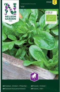 Salat Vit Økologisk (91340)
