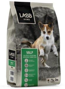 Labb Hund Valp 3 kg