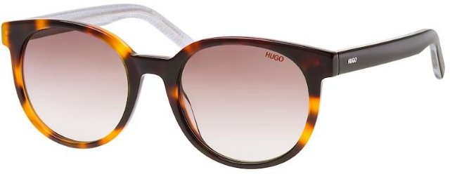 Hugo Boss 1011