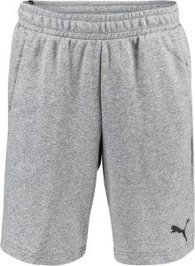 Essentials shorts 10″