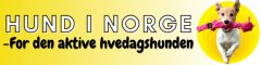 Hund i Norge logo
