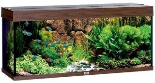 Rio 240 Akvarium