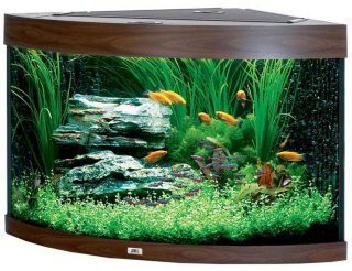 Trigon 190 Akvarium
