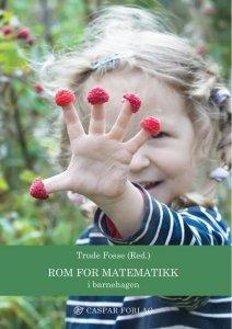 Rom for matematikk – i barnehagen