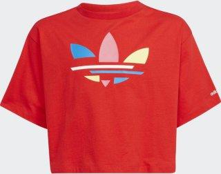 Adicolor Cropped T-skjorte (Barn)
