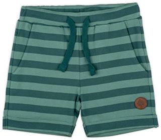 Villvette Shorts