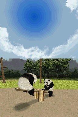 National Geographic: Panda