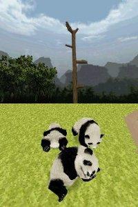 National Geographic: Panda  til DS