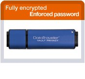 Kingston Kingston DataTraveler Vault 16 GB Privacy Edition