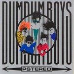 DumDum Boys Pstereo