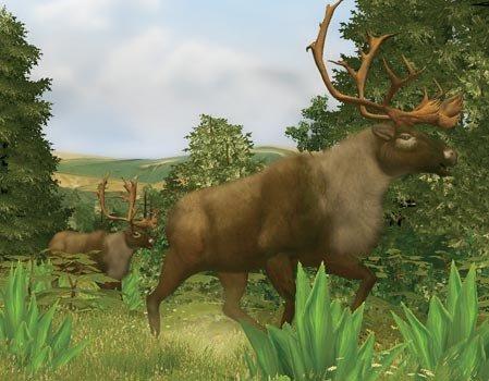 Cabela's Big Game Hunter til Wii